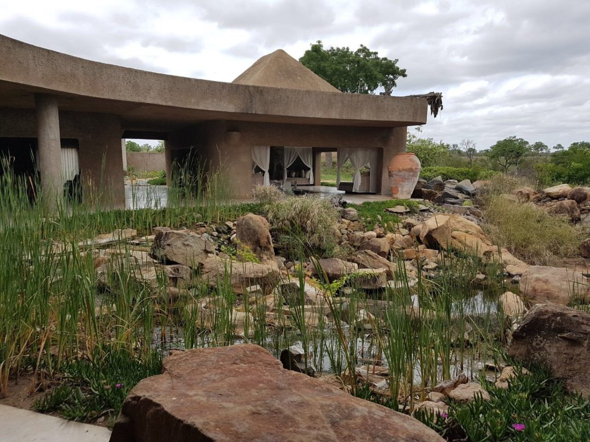 Sabi Sands Game Reserve and Sun City